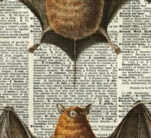 Bat Anatomy Illustration Over Vintage Encyclopedia Page Sticker