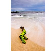 Washed Up Photographic Print