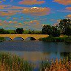 Kilcona Park Bridge by Larry Trupp
