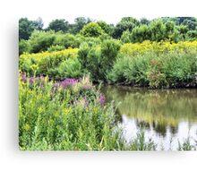 Wetlands in Summer Canvas Print