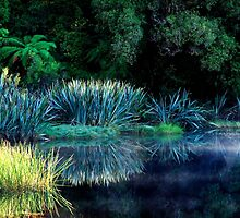 Silent Lake by Angelika  Vogel