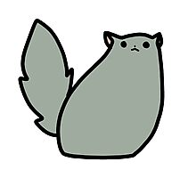 Fluffy Gray Cat Photographic Print