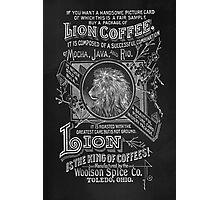 Lion Coffee Photographic Print