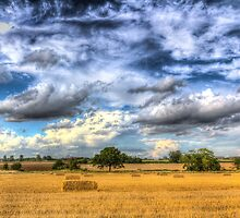 The farm in the summertime  by DavidHornchurch