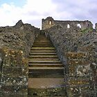 Sherborne Old Castle (3) by lezvee