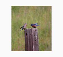 Bluebird pair on a fencepost T-Shirt