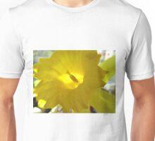 Spring Fanfare Unisex T-Shirt