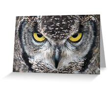 Look Into My Eyes: (African Spotted Eagle Owl) Greeting Card