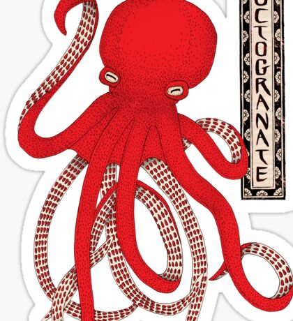 Pomegranate Octopus Octogranate Sticker