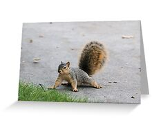 Poof Greeting Card