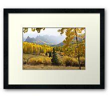 Leaf Days Framed Print