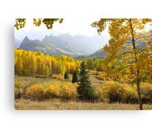Leaf Days Canvas Print