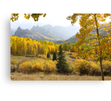 Leaf Days Canvas Print