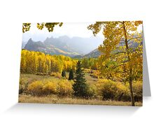 Leaf Days Greeting Card