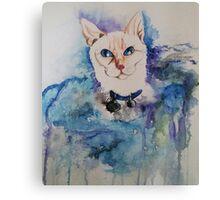 Regina Cat Rescue Ft. Mr. Spock Canvas Print