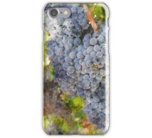 Grapes in the Vineyard iPhone Case/Skin