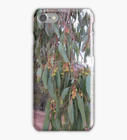 Australian Gum Leaves iPhone Case/Skin