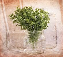 Still life with basil and mason jars by Celeste Mookherjee
