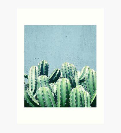 Cactus & Teal #redbubble #lifestyle Art Print
