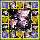 Cute Crocuses Collage by BlueMoonRose