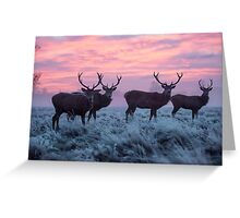 Winter wonderland of frosty stags Greeting Card