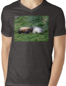 Sleepy Seal T-Shirt