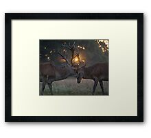 Antlers Cage Around The Sun Framed Print