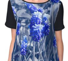 Muscari blue flowers, black white photo with blue toning Chiffon Top