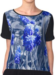 Muscari blue flowers, black white photo with blue toning Chiffon Top
