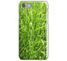 long green grass background iPhone Case/Skin
