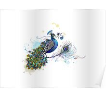 Blue Paisley Peacock Poster