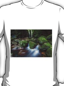 Box Log Falls T-Shirt