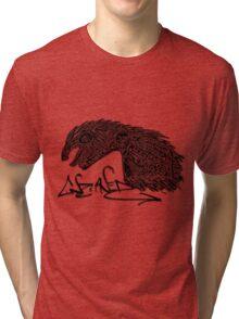 DRAGONAUT Tri-blend T-Shirt