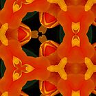 Kaleidoscope Geometry Pattern From Nature 45 by Kenneth Grzesik