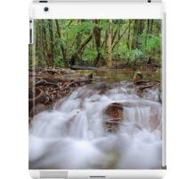 Rainforest cascades iPad Case/Skin