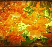 Orange Orchid Tangle by MotherNature2