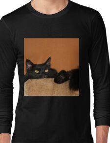 Pooh Bear Peeping  Long Sleeve T-Shirt