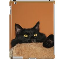 Pooh Bear Peeping  iPad Case/Skin