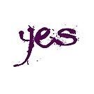 say yes! by yvonne willemsen