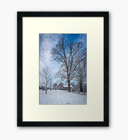 Frosty Blue Framed Print
