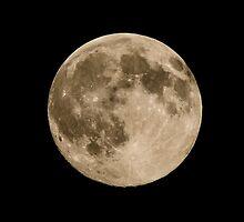 Super Moon July 11, 2014 by Tom Gotzy