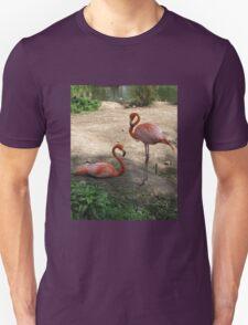 Flamingo pair Unisex T-Shirt