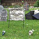 Groovy Graveyard by Monnie Ryan