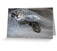 Mikino bubble-wrapped Greeting Card
