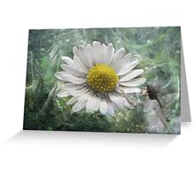 The Touch Of The Nature Fariy Greeting Card
