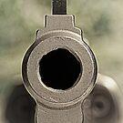 .357 Magnum Revolver - 3 by doorfrontphotos