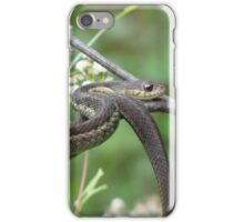 Snake, Sticks, and Flowers iPhone Case/Skin