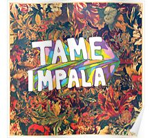 tame poster Poster
