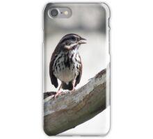 A Restful Chirp iPhone Case/Skin