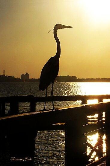 The Heron ~ Sundown Silhouette by SummerJade
